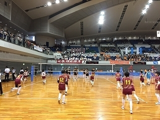 volleyball (10).jpg
