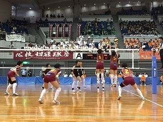 volleyball (11).jpg