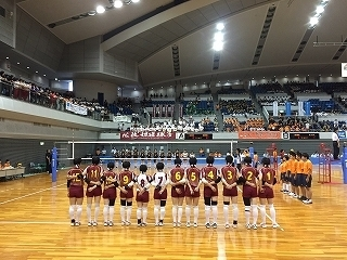 volleyball (12).jpg